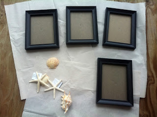 A close up of four black picture frames with assorted shells on white paper