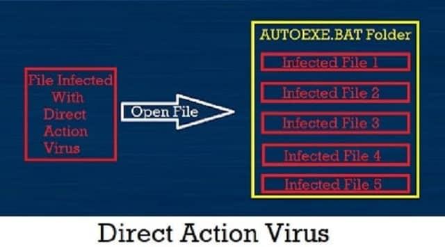 डायरेक्ट एक्शन वायरस (Direct Action Virus)