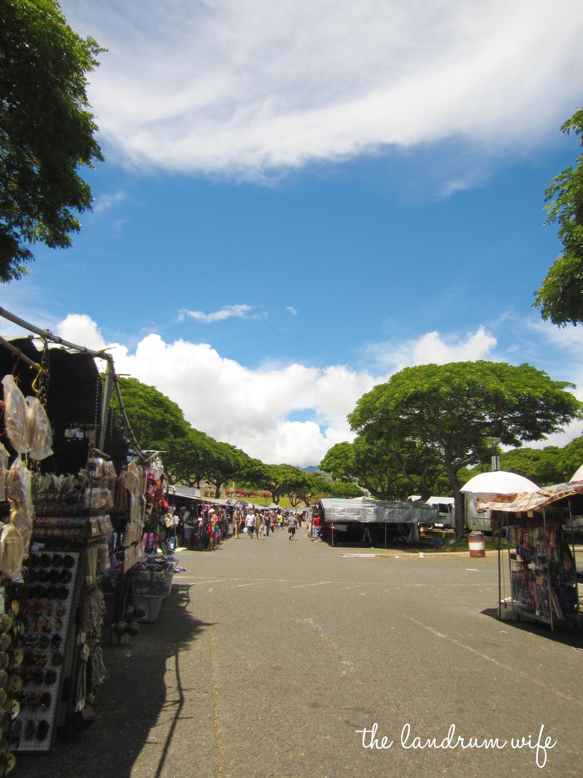 And Drink the Wild Air: Getting to Know Hawaii: Aloha