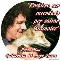 Brian May loves animals