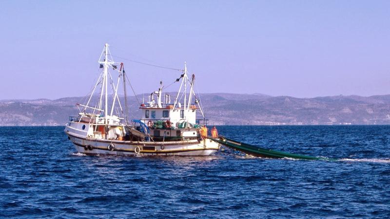 Υπάρχει πολιτική βούληση για να λυθεί το πρόβλημα με την αλιεία στο Θρακικό Πέλαγος;