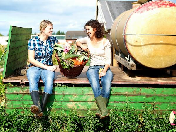 Urban Gardening - hier kann man selber säen, pflanzen und ernten (ganz ohne eigenen Garten)