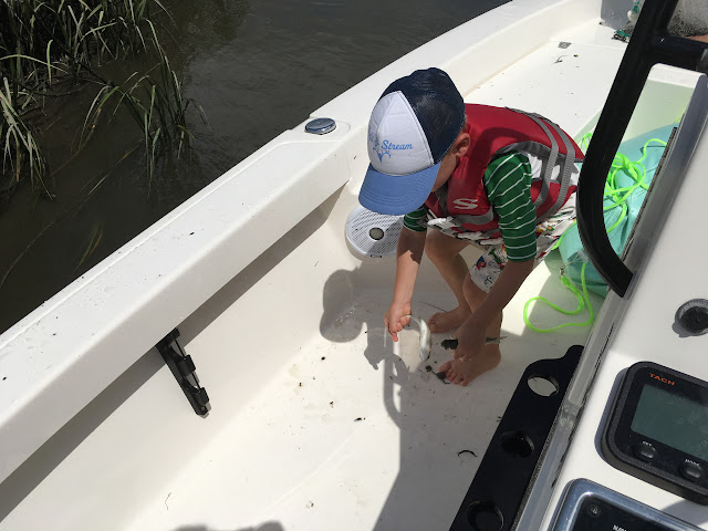 Fishing in Charleston, SC with kids | The Lowcountry Lady
