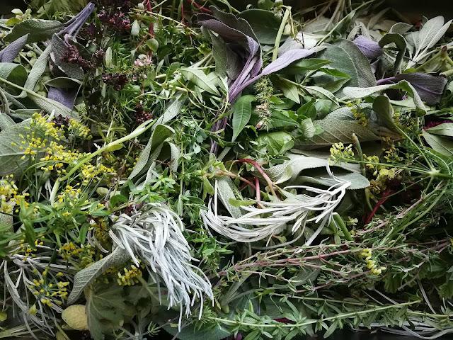 Jak doprawić potrawę? Jakie zioła wybrać ?