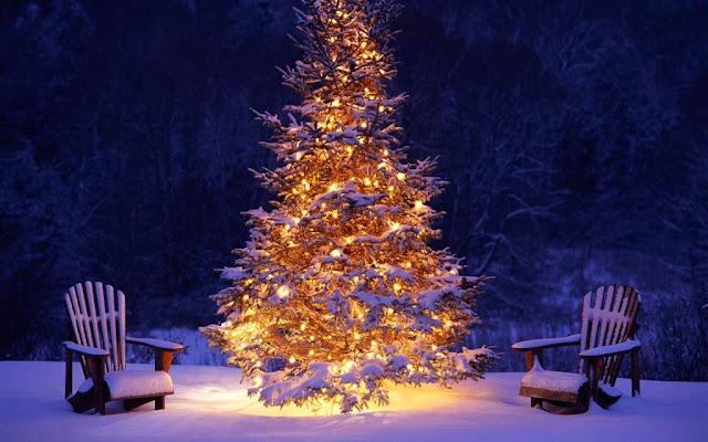 Parole Di Buon Natale.Pensieri Parole Fantasia Tanti Auguri Di Buon Natale A