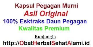 Jual manfaat khasiat kapsul klorofil PEGAGAN HS Asli HPAI BPOM