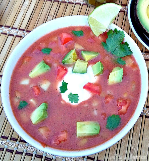 Salsa-Gazpacho - Home Sweet Homestead
