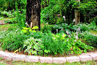 Liriope and Hosta Garden