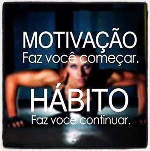 Luiza's Blog: MOTIVAÇÃO & HÁBITO