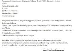 Contoh Surat Pernyataan Pegawai Karyawan Dan Pns Isplbwiki Net