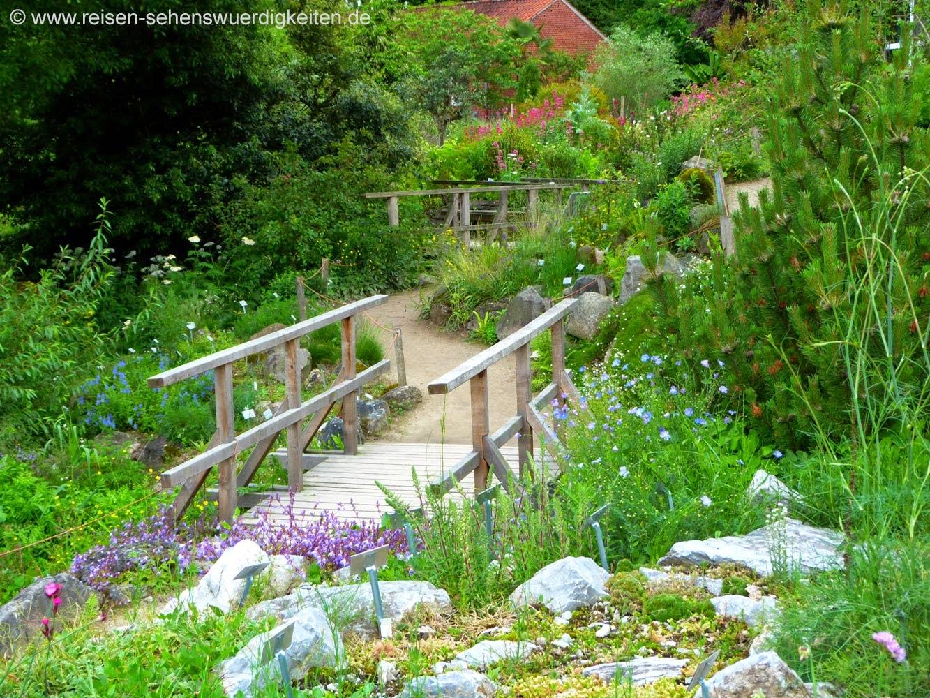 Kleine Brücken im Botanischen Garten von Münster