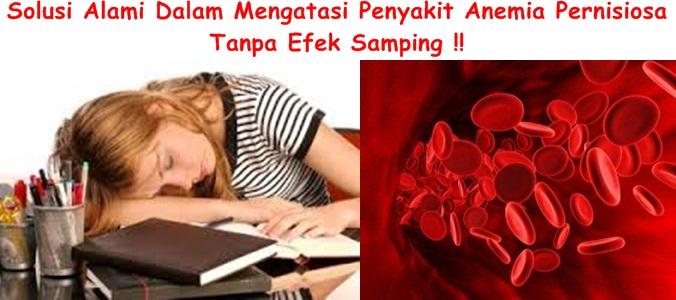 Obat Tradisional Anemia Pernisiosa