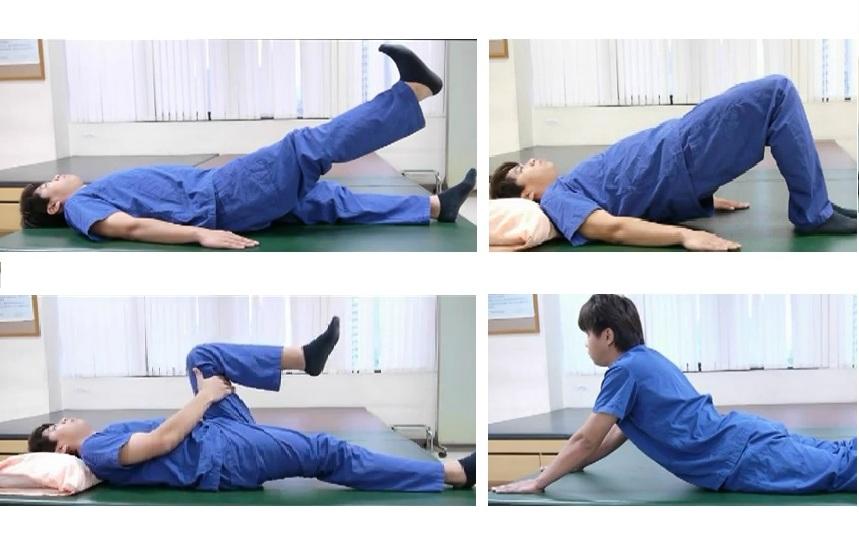 愛分享: 這裡痛, 那裡痛 --下背痛--預防及復健運動