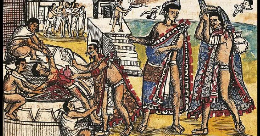erección retráctil king charles cavalier