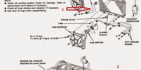 Diagram selang sistem pendingin pada accord maestro