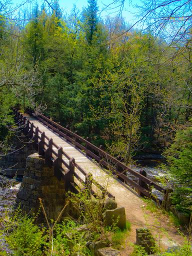 Foot bridge at Eau Claire Dells