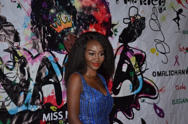 Miss-Nigeria-USA-2017-organizer