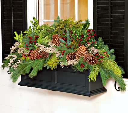 Calling it Home: Winter Window Boxes