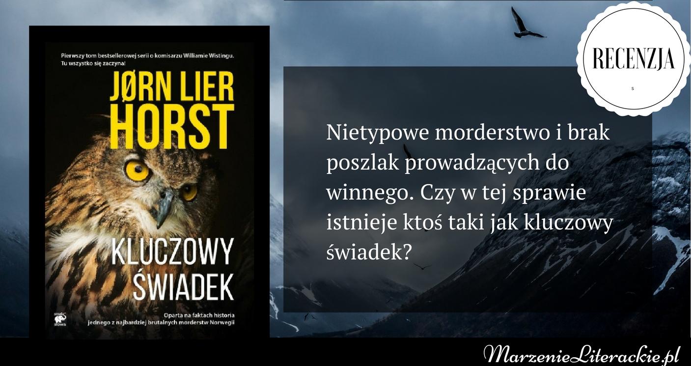 Jørn Lier Horst - Kluczowy świadek | Nietypowe morderstwo i brak poszlak prowadzących do winnego. Czy w tej sprawie istnieje ktoś taki jak kluczowy świadek?