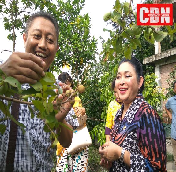 Titiek Soeharto dan Bonaventura Ardi Nugroho, pengelola ragam jenis buah yang diharapkan bisa menjadi tuan rumah di negeri sendiri, tidak lagi mengandalkan impor.