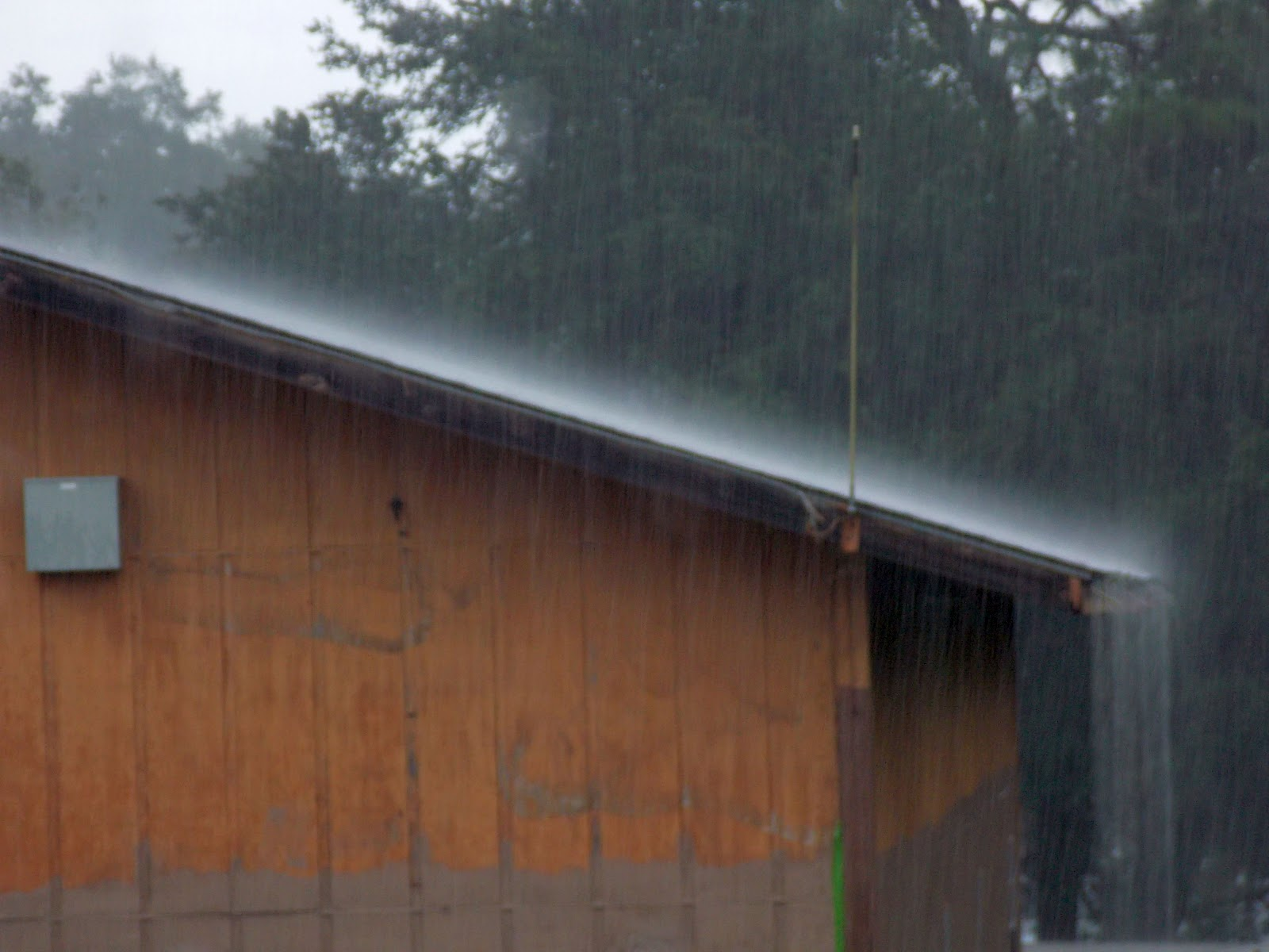 A wooden shed in the rain. Water streams off the eaves which are far enough out that the walls are protected.