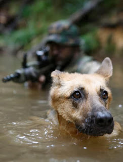 each day our heroes risk life and face the unknown for the love of mankind