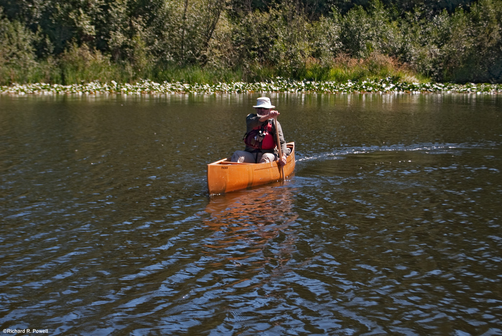 100 Lakes on Vancouver Island: 14 Prospector, Packer, Solitude