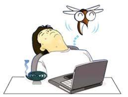 rem des anti moustique naturel tr s efficace blog f minin beaut sant. Black Bedroom Furniture Sets. Home Design Ideas