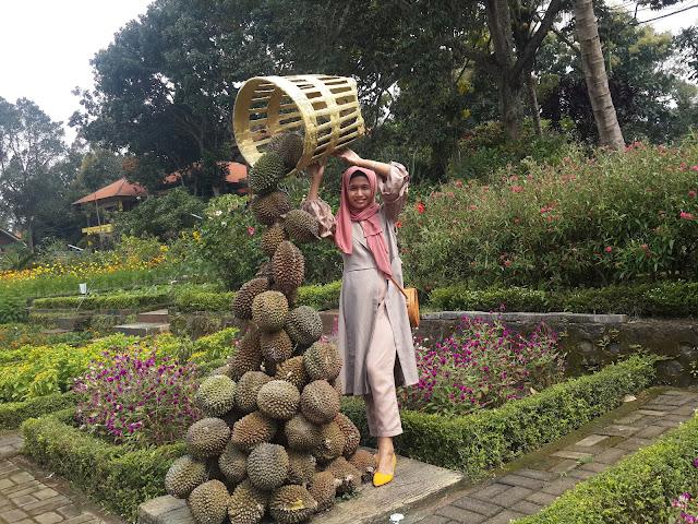 """Foto Ilustrasi Durian Runtuh """"Peluang Usaha Bagi Pecinta travel dan Kuliner"""""""