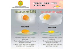 membantah isu telur palsu