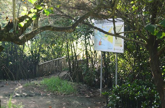 Blusukan melewati jalan setapak di area Hutan Mangrove Pantai Baros