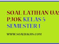 Soal Latihan UAS PJOK Kelas 5 Semester 1 2016 2017