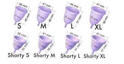 Toutes les tailles et formes de cup coupe menstruelle