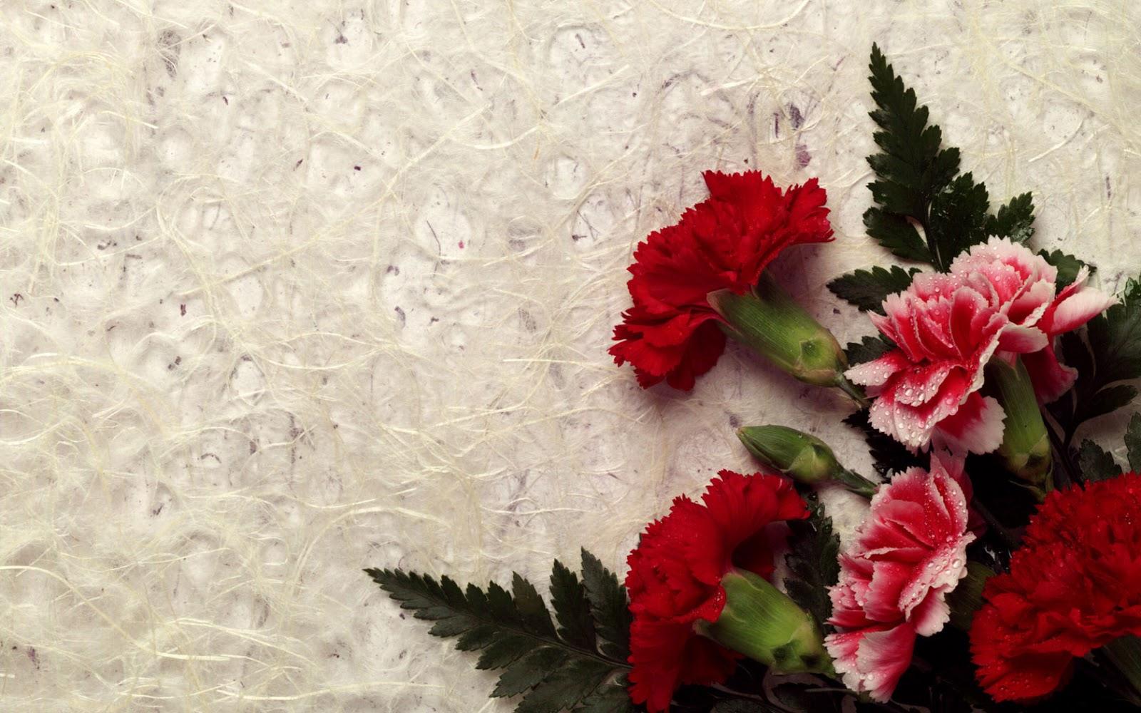 Free Wallpaper Dekstop: Flowers hd wallpape, flower hd wallpaper