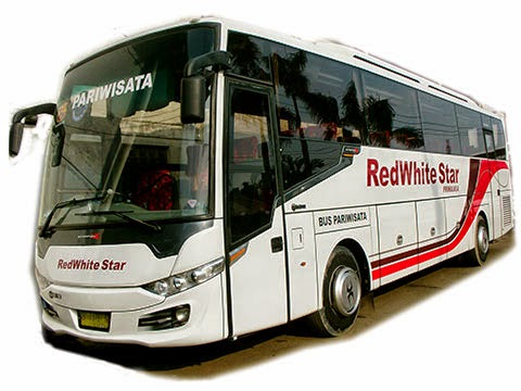bus pariwisata red white star