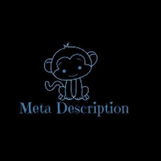 On page seo meta description