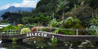 Selecta Malang