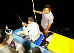 Mancing Ikan Pari Besar Hampir Nyemplung