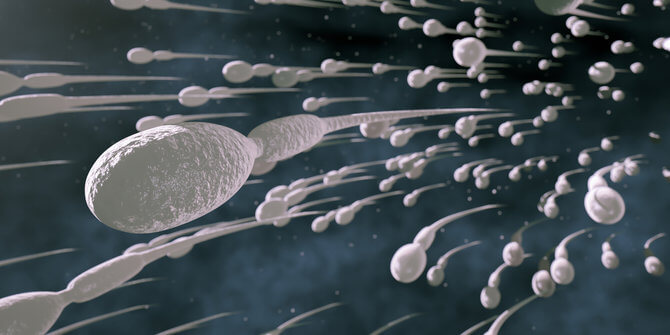Makan Toge Bisa Bikin Sperma Sehat Bener gak Sih, Yuk Cari Tau