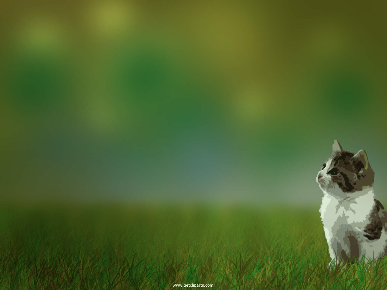 Wallpaper Funny Dog Pictures