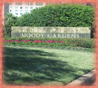 Moody Garden Hotel