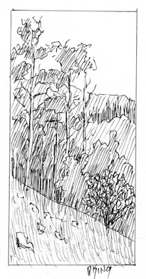 art sketch pen ink landscape mountain tree