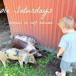Simple Saturdays Blog Link Party, 2/20