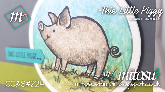 This Little Piggy Stampin Up SU Jay Soriano Mitosu Crafts Order Stampinup UK Online Shop 1