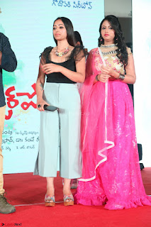 Geethanjali and Swetha Basu at Mixture Potlam Movie Audio Launch Feb 2017 005.JPG