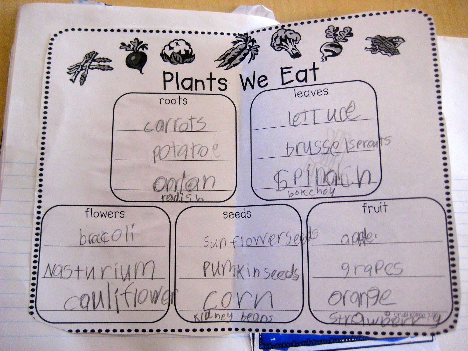 Ms Liebel S Classroom Plant Unit Plants We Eat