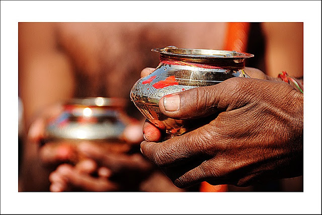 nectarul nemuririi este un elixir miraculos