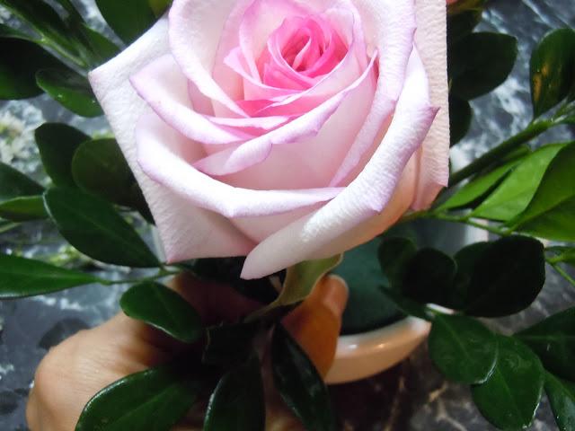 Atelier De Charo Pequeño Arreglo Floral Little Floral