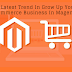 The Latest Trend In Grow Up Your E-commerce Business In Magento.