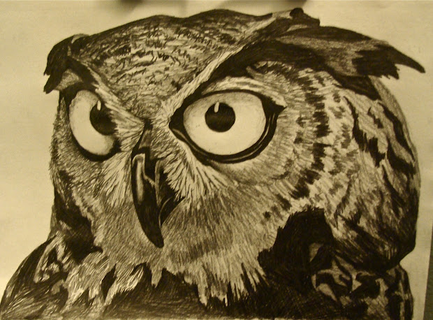 James . Autio Owl Drawing - Pencil Paper